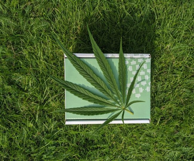 Different Types of Cannabinoid Products